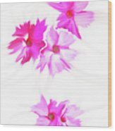 Smudged Floating Pink Flowers Wood Print