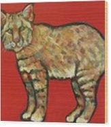 Smug Bobcat Wood Print