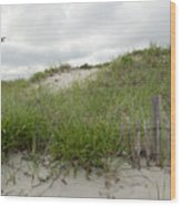 Smugglers Beach Dune South Yarmouth Cape Cod Massachusetts Wood Print by Michelle Wiarda