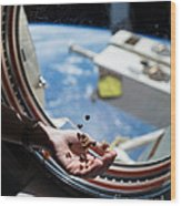 Snacking In Space Wood Print