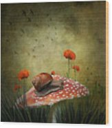 Snail Pace Wood Print