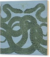 Snake Council Wood Print by Pati Hays