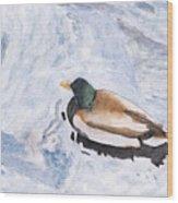 Snake Lake Duck Sketch Wood Print