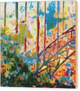 Snake River Bridge Wood Print