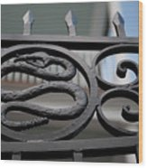 Snakes On A Gate Wood Print
