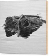 Sneaky Wood Print