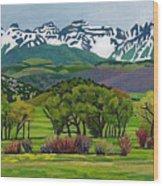 Sneffels Range Spring Acrylic Wood Print