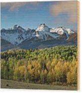 Sneffls Range Panorama From County Road 5  Wood Print