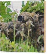 Sniper Wood Print