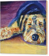 Snooze Airedale Terrier Wood Print