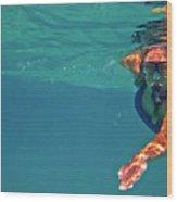 Snorkeler 2 Wood Print by Bette Phelan