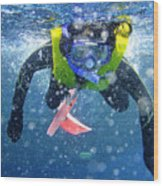 Snorkeling At The Great Barrier Reef Wood Print