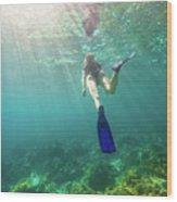 Snorkeling In Coral Reef Wood Print