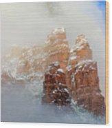 Snow 07-102 Wood Print