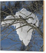 Snow And Africa Wood Print
