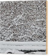 Snow And Bench Wood Print