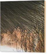 Snow And Wind Wood Print