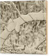 Snow Arch Wood Print