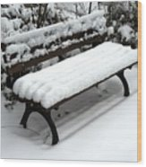 Snow Bench Wood Print