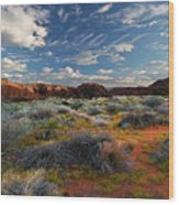 Snow Canyon Evening Glow Wood Print