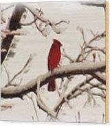 Snow Cardinal Wood Print by Janet Pugh