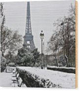 Snow Carpets Benches And Eiffel Tower Wood Print by Jade and Bertrand Maitre