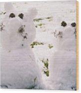 Snow Cats Wood Print