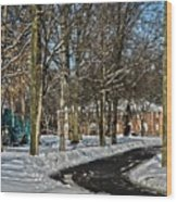 Snow Cleared Road Wood Print