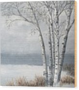 Snow Coming Into The South Shore  Wood Print