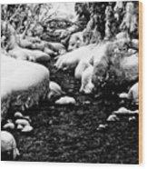 Snow Covered Banks Wood Print