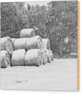 Snow Covered Hay Bales Wood Print
