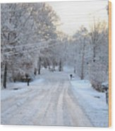Snow Covered Lane In Paint Wood Print