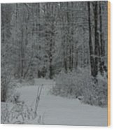Snow Covered Path Into The Woods Wood Print