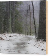 Snow Covered Path Quantico National Cemetery Wood Print