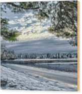 Snow Covered Pines Wood Print