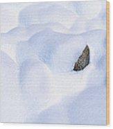 Snow-covered Rocks In Yosemite Wood Print