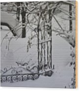 Snow Covered Wisteria Arch Wood Print