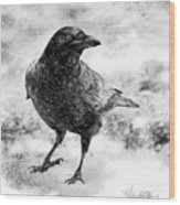 To Know A Crow Wood Print