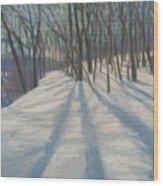 Snow Day At Winnekini Wood Print