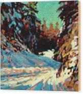 Snow Drive 2 Wood Print