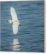 Snow Egret In Flight Wood Print