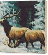 Snow Elk Wood Print