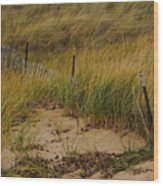 Snow Fence In Sand Wood Print