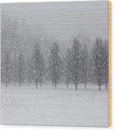Snow Flakes Wood Print