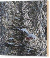 Snow Flocked Pines One Wood Print