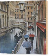 Snow Flurry In Venice Wood Print
