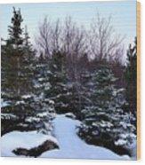 Snow For Christmas Wood Print
