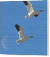 Snow Geese Moon Wood Print