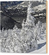 Snow Ghosts On Whistler Mountain Wood Print