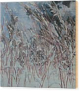 Snow Grass Happiness Wood Print